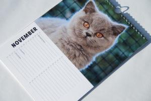 Verjaardagskalender, kalender