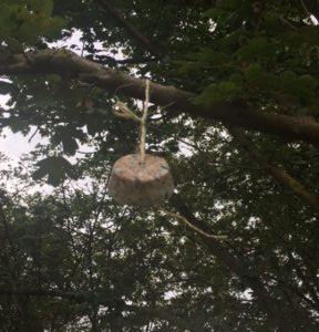 DIY vetbollen vogels