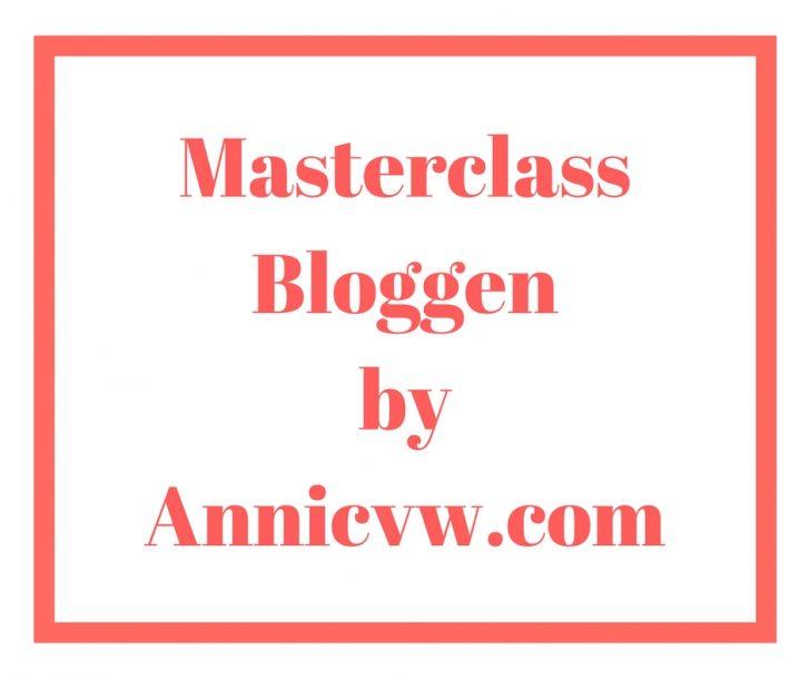 Hoe was de Masterclass bloggen van Annic?